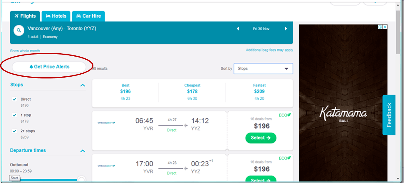 screenshot of skyscanner webpage showing Get Price Alerts