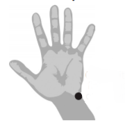 diagram of hand showing meridian point on outer side of wrist