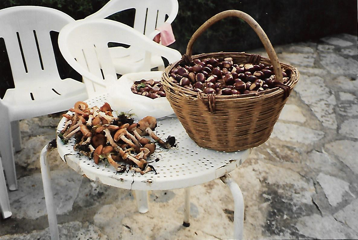 chestnuts in a wooden basket sitting on a table