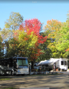 two motorhome sites shaded by autumn trees coloured in green, orange and red.